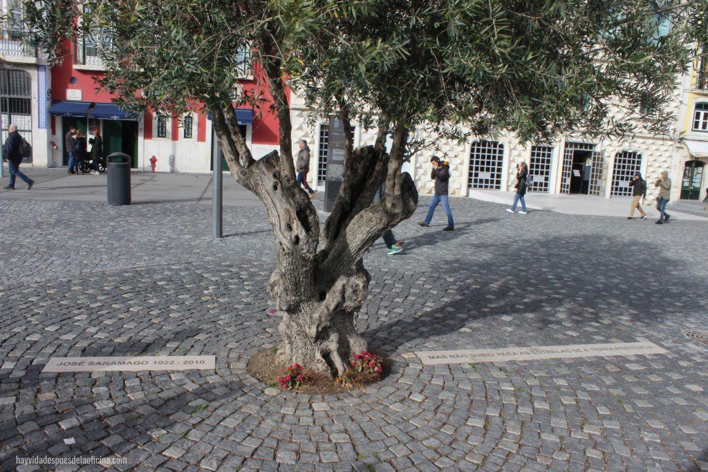Alfama, Lisboa por libre - Hay vida después de la oficina