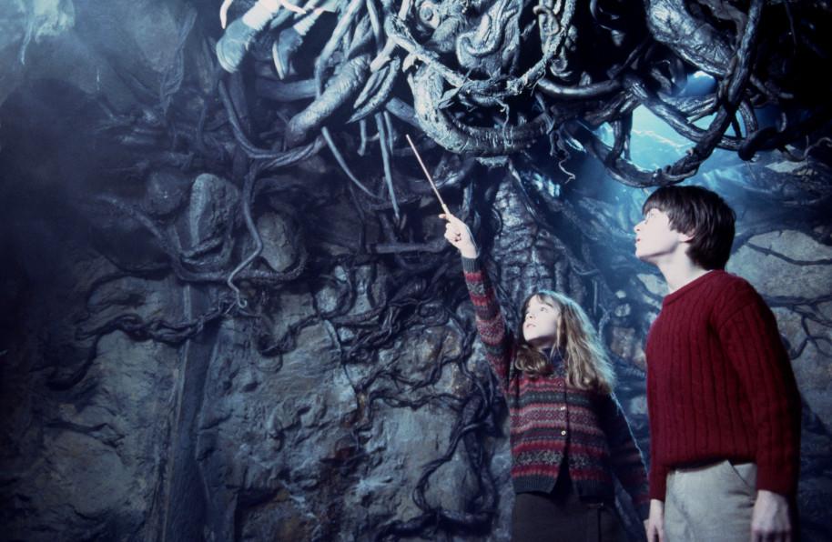 Lazo del Diablo Harry Potter - Hay vida después de la oficina