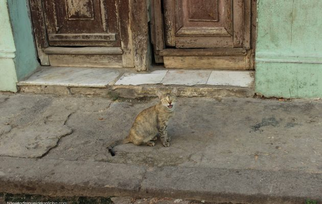 La Habana - Hay Vida Después de la Oficina